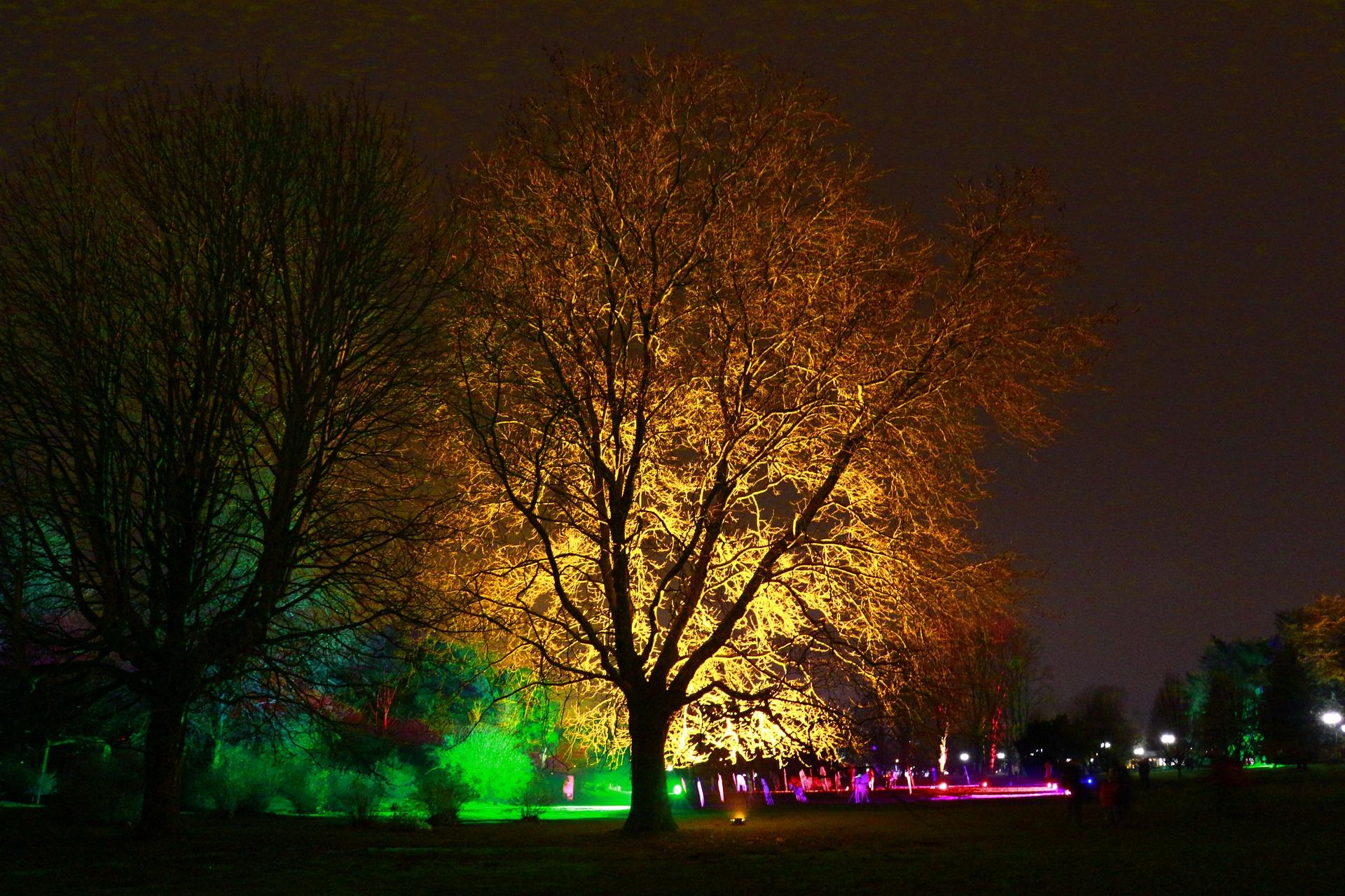 Westfalenpark Jahreskarte